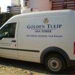 golden_tulip